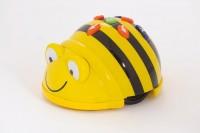 BeeBot Bodenroboter