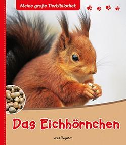 """Tierbuch """"Das Eichhörnchen"""""""