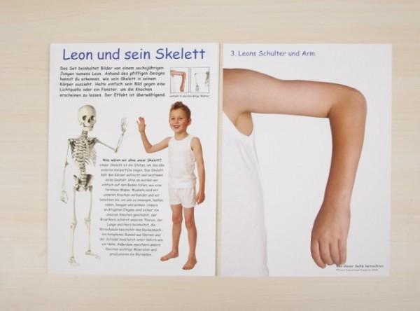 """""""Leon's Knochen"""" - Lernreihe"""
