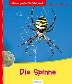 """Tierbuch """"Die Spinne"""""""