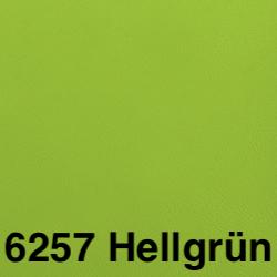 Kunstleder-6257-Hellgru-n